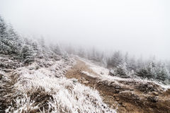 Mountain path with snow Royalty Free Stock Photo