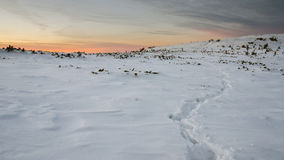Mountain path in snow at the sunset. In carphatians mountains Royalty Free Stock Photo