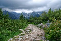Mountain path in Tatry in Poland. In the foreground is mountain path. In a background are mountain peaks hidden behind clouds Royalty Free Stock Images