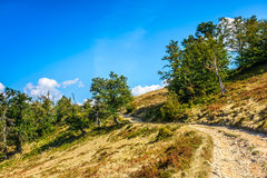 Mountain path uphill to the sky. Summer landscape. mountain curve path through the field turns uphill to the sky Stock Image