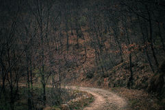 The mountain path Royalty Free Stock Photos