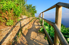 Mountain path in vineyards Royalty Free Stock Photo