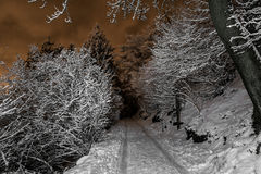 Mountain path in winter night, Varese Stock Image