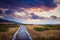 Mountain path. Wooden mountain path in Krkonose (Czech Republic) hills in sunset royalty free stock photography