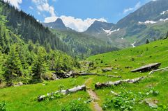 Mountain paths and beautiful views of the Carpathians Stock Images