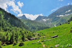 Mountain paths and majestic views of the Carpathians Royalty Free Stock Image