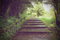 Mountain Pathway Stock Photography