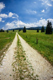 Mountain Path. Way in summer in the Alps Stock Photo