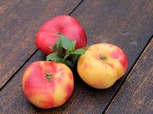 Mountain peaches Stock Photography