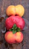 Mountain peaches Royalty Free Stock Images