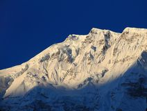 Mountain peak in the Annapurna ridge at sunset, Stock Photos