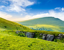 Mountain peak behind hillside with boulders at sunrise. View on high mountain peak from hillside covered with white boulders and conifer trees among green grass Stock Image