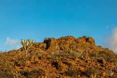 Mountain Peak with cactus vegetation, at Astronomic Observatory in Temisas, Gran Canaria. Mountain peak with cactus, blue sky above, at Temisas Astronomic Stock Photography