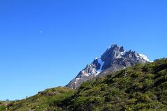 Mountain. Peak covered with snow behind a  covered with vegetation. Shot in Patagonia, South America Royalty Free Stock Image