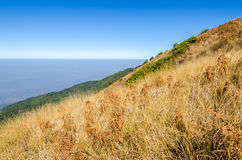 Mountain peak with dry meadow Royalty Free Stock Photography