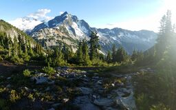 Mountain peak and evergreen forest Royalty Free Stock Image