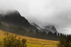 Mountain peak in fog. Carpathian mountain peak in autumn fog Royalty Free Stock Photo