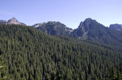 Mountain peak forest Royalty Free Stock Photography