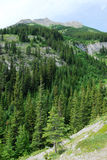 Mountain peak and forests stock images