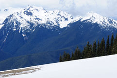 Mountain peak in hurricane ridge Royalty Free Stock Images