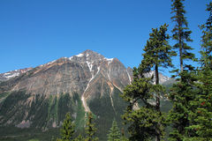 Mountain Peak in Jasper Park in Alberta Stock Photo