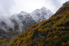 Mountain peak and landscape of the golden autumn Royalty Free Stock Photography