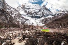 Mountain peak with snow Royalty Free Stock Image