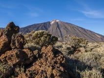 Mountain peak. Volcanic landscape - mountain range - desert - blue sky - bushes - no people Stock Image