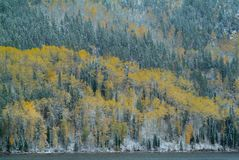 Mountain peaks with autumn forest and lake. Snowy mountain peaks with autumn forest and lake Stock Photography