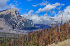 Mountain peaks of Canada Stock Image