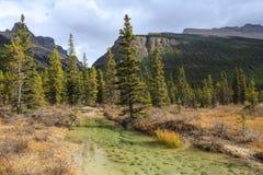 Mountain peaks of Canada Royalty Free Stock Photos