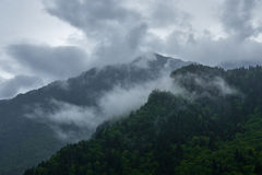 Mountain peaks covered with forest under cloudy sky Royalty Free Stock Image