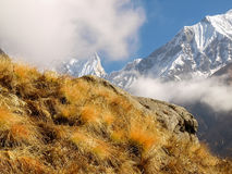 Mountain peaks covered glaciers with withered grass in the foreg Royalty Free Stock Image