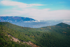 Mountain peaks covered with trees Royalty Free Stock Photography