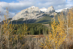 Mountain Peaks in Fall. A mountain viewed between trees in autumn Stock Photography