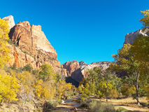 Mountain Peaks and Fall Colors in Zion National Park Utah Stock Photo