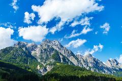 Mountain peaks, green meadows and pine trees in Tyrol Alps Royalty Free Stock Image