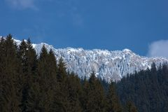 Mountain peaks panorama and conifer forest in winter season. Mountaineering and hiking are just a few that can be promoted through this picture Stock Photos
