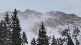 Mountain peaks with snow. A winter mountain  landscape with peaks covered in snow and some pine trees Royalty Free Stock Photography