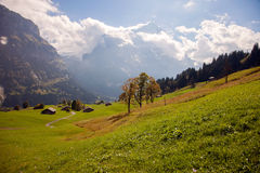Mountain peaks, streams and meadows in Grindelwald, Switzerland Royalty Free Stock Photo