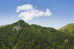 Mountain peaks in the summer Stock Images