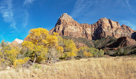 Mountain Peaks in Zion National Park Utah. Rock formations and Fall Colors in the Trees in Zion National Park in Utah, United States of America Royalty Free Stock Image