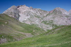 Mountain Peeks And Alpine Meadows Royalty Free Stock Image