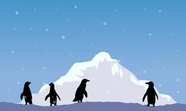 Mountain with penguin silhouette scenery Royalty Free Stock Photography