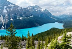 Mountain Peyto lake at sunny weather royalty free stock images