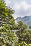 Mountain Royalty Free Stock Photos