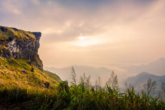 Mountain at Phucheefa,Chiangrai  ,Thailand. Royalty Free Stock Photos