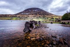Single high mountain with pick in clouds and tree trunks in lake in Northern Ireland royalty free stock images