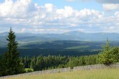 Mountain pine fence Stock Photo