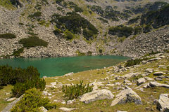 Mountain Pirin Landscape Royalty Free Stock Image